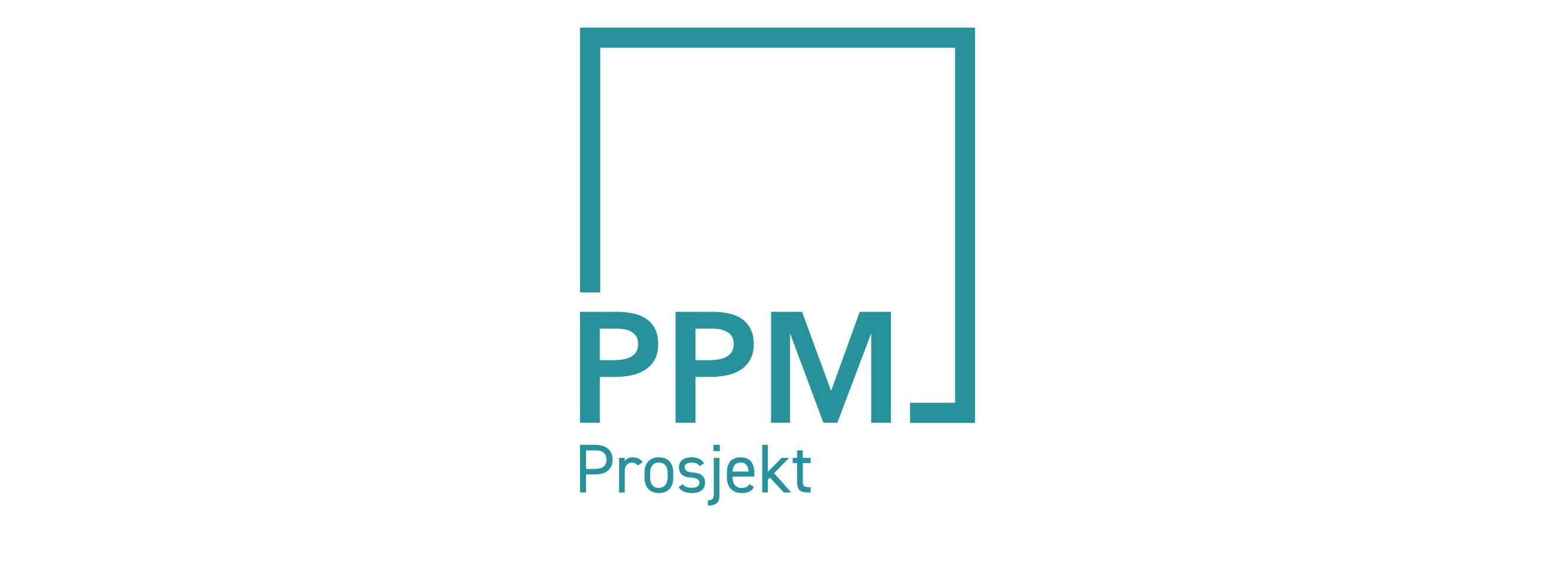 Prosjektleder/avdelingsleder – PPM Prosjekt